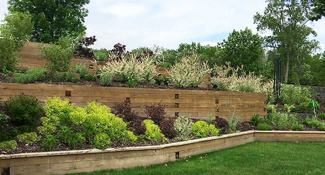 timber planter walls